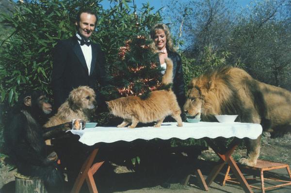 03_TARZAN-Hubert & Lion, Cat, Dog, Chimp